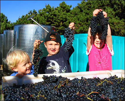 grandchildren with grapes
